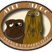 Logo_AFEP_MHOC